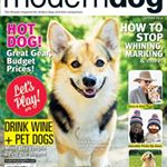 @moderndogmag's profile picture on influence.co