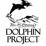 @dolphin_project's profile picture on influence.co