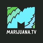 @marijuana.tv's profile picture on influence.co