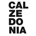 @calzedonia's profile picture on influence.co