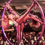 @lucentdossier's profile picture