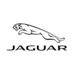 @jaguar's profile picture