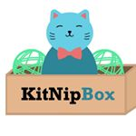 @kitnipbox's profile picture on influence.co