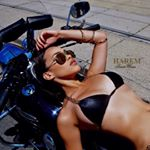 @haremswimwear's profile picture on influence.co