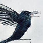@birdsdoingyoga's profile picture on influence.co
