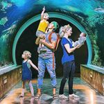 @thebucketlistfamily's profile picture on influence.co