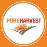 @pureharvest's profile picture