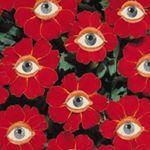 @sallypatti's profile picture on influence.co