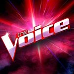 @thevoiceau's profile picture