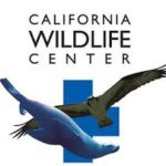 @cawildlife's profile picture on influence.co