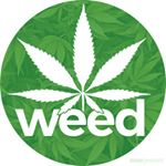@weed's profile picture