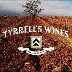 @tyrrellswines's profile picture