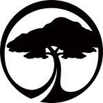 @arborvenice's profile picture on influence.co