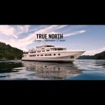 @northstarcruises's profile picture on influence.co