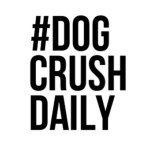 @dogcrushdaily's profile picture on influence.co