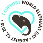 @worldelephantday's profile picture on influence.co
