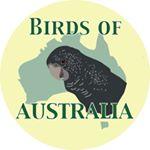 @birdsofaustralia's profile picture on influence.co