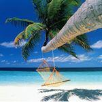 @travelingpost's profile picture