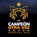 @clubtigresoficial's profile picture