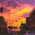 @venice_life600's profile picture on influence.co