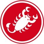 @castellicycling's profile picture