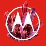 @motorola's profile picture