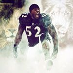 @raylewis's profile picture on influence.co