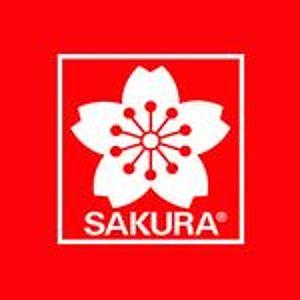 @sakuraofamerica's profile picture