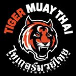 @tigermuaythai's profile picture on influence.co