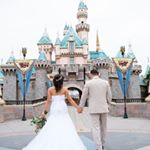 @disneyweddings's profile picture