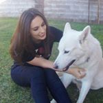 @veterinary_adventures's profile picture on influence.co