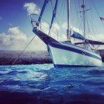@sfsailingco's profile picture on influence.co