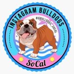 @igbulldogs_socal's profile picture on influence.co