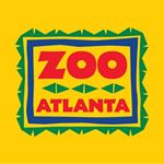 @zooatl's profile picture on influence.co