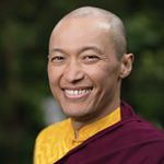 @sakyongmiphamrinpoche's profile picture