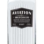 @aviationgin's profile picture