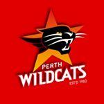 @perthwildcats's profile picture