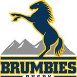 @brumbiesrugby's profile picture