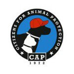 @cap4pets's profile picture on influence.co