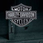 @harleyaustralia's profile picture on influence.co