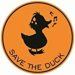 @save_the_duck's profile picture on influence.co