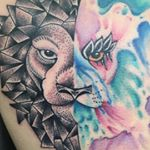 @inklifetattoostudio's profile picture on influence.co