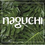 @naguchioficial's profile picture on influence.co