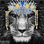 @pavoneboutique's profile picture on influence.co