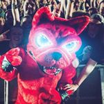 @downloadfest's profile picture on influence.co
