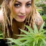 @420pinups's profile picture