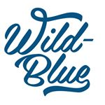 @wildbluedenim's profile picture
