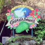 @guanabanasrestaurant's profile picture