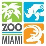 @zoomiami's profile picture on influence.co