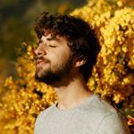 @bernardomoreiraa's profile picture on influence.co